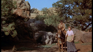 Tommy Kirk as Travis Coates and Dorothy McGuire as Katie Coates in Old Yeller