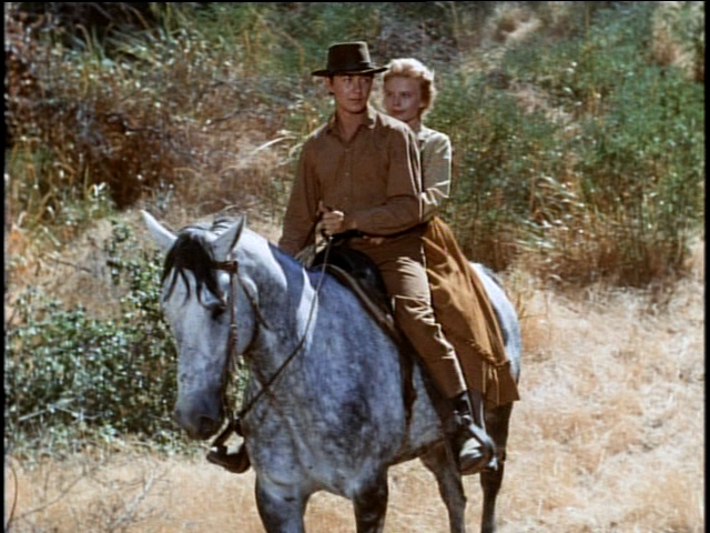 Tommy kirk old yeller movie