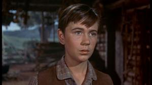 Tommy Kirk as Travis Coates in Old Yeller