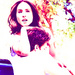 Troian Bellisario and Keegan Allen - troian-bellisario icon