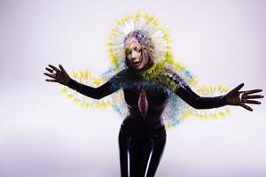 Vulnicura photoshoot oleh Inez and Vinoodh-03