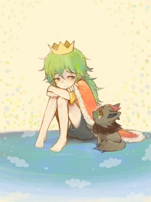 Young N with his Zorua