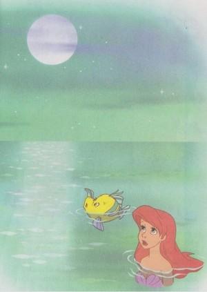 moonlight <3