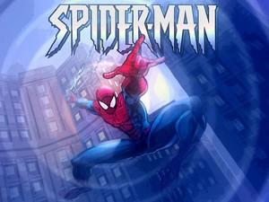 spider564