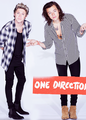 Niall and Harry - one-direction photo