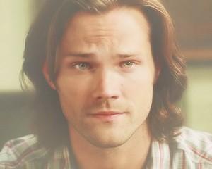 ✧ Sam Winchester ✧