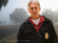 ...been down this road before - mark-harmon wallpaper
