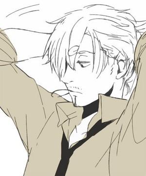 8D sanji ponytail