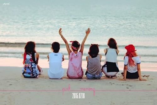 Korea Girls Group A Pink wallpaper called A Pink ''Pink Memory''