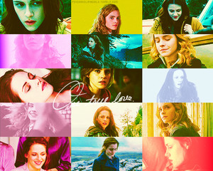 Bella angsa, swan and Hermione Granger / Twilight and Harry Potter series