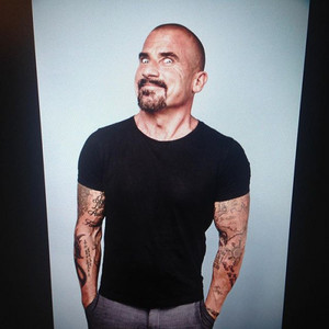 Dominic Purcell Portraits