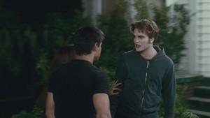 Edward and Jacob fight