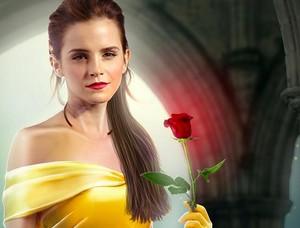 Emma Watson,Belle / Beauty and the Beast