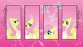 Fluttershy - fluttershy wallpaper