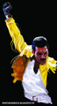 Freddie Mercury fanart - freddie-mercury fan art