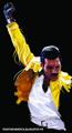Freddie Mercury fanart