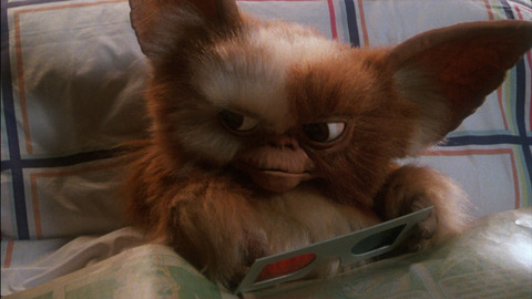 the gremlins gremlins images gizmo wallpaper and background photos 38647566