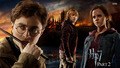 Harry Potter and the Deathly Hallows - harry-potter wallpaper
