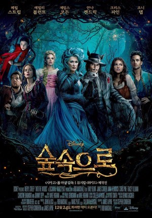 Into the Woods Korean Poster
