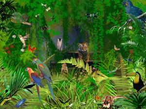 Jungle animali