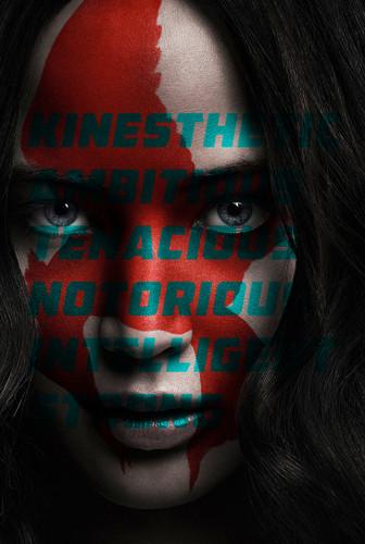 凯特尼斯·伊夫狄恩 壁纸 called Katniss Everdeen