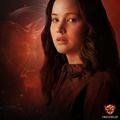 Katniss Everdeen - the-hunger-games photo