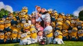 Minions            - despicable-me-minions photo