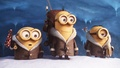 Minions            - despicable-me-minions wallpaper