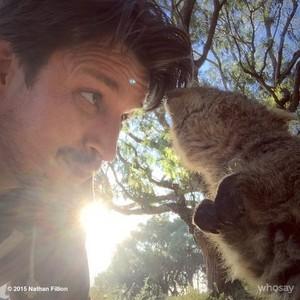 Nathan at Australia(June,2015)