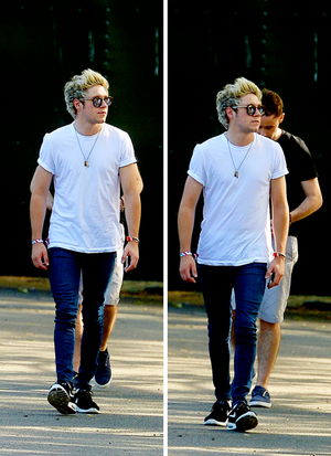 Niall at Wireless Festival