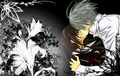 Passion Kiss - Zeki - vampire-knight-yuki-zero fan art