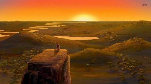 the lion king wallpaper with a sunset entitled The Lion King