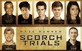 The Scorch trials Cast at Comic con