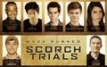 The Scorch trials Cast at Comic con