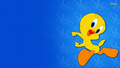 Tweety - the-looney-tunes-show wallpaper
