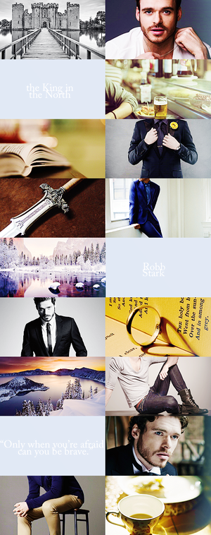 We Might Fall Modern Aesthetics ; Robb Stark