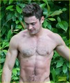 Zac Efron Goes Shirtless in Hawaii, Is More Ripped Than Ever!  - zac-efron photo