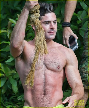 Zac Efron Goes Shirtless in Hawaii, Is lebih Ripped Than Ever!