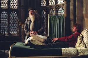 dumbledore and ron