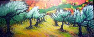 橄榄 trees