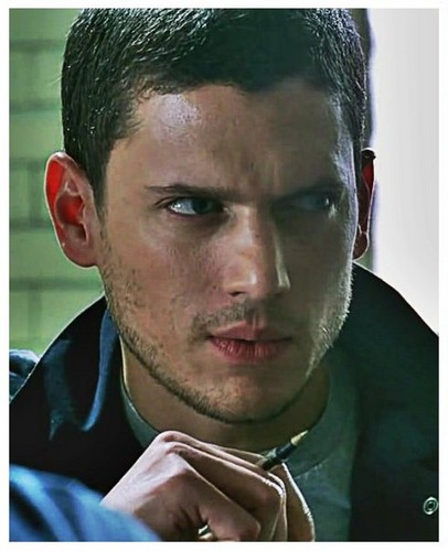 Wentworth Miller hình nền possibly with a portrait entitled prison break-michael scofield