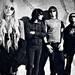 the Pretty Reckless - music icon