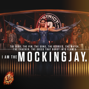 """I Am the Mockingjay"""