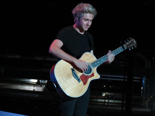 Niall Horan Hintergrund with a guitarist titled OTRA - East Rutherford