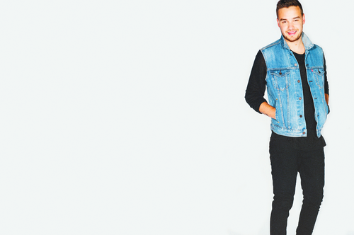 Liam Payne wallpaper containing a well dressed person, a business suit, and long trousers called 1D Calendar 2016