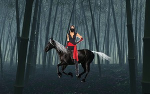 A Hot Kunoichi riding her beautiful black coursier, steed at night