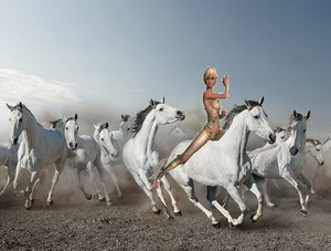 An young beautiful амазонка woman had tamed and ride on a white stallion to lead a herd of wild Лошади