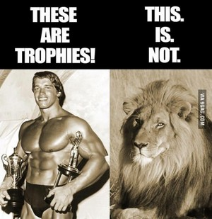 animaux are not trophies!!!!!!!!