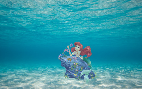 The Little Mermaid kertas dinding titled Ariel Submerged