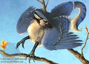 Blue chim giẻ cùi, jay Gryphon